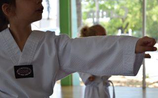 martial-arts-4255007_1920