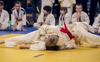 judo-4454835_1920